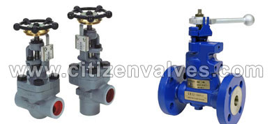 Alloy 20 Blowdown Valves Suppliers Dealers Distributors in India