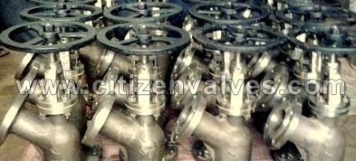 Carbon Steel Flush Bottom Valve Suppliers Dealers Distributors in India