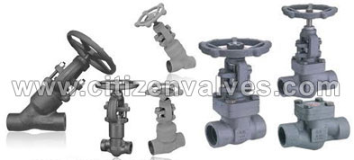 Stainless Steel Forged Valves Suppliers Dealers Distributors in India