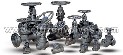 Stainless Steel ASTM A995 Valves Manufacturer in India