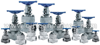 Alloy Steel Forged Valves Suppliers Dealers Distributors in India