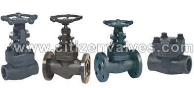 Carbon Steel Forged Valves Suppliers Dealers Distributors in India
