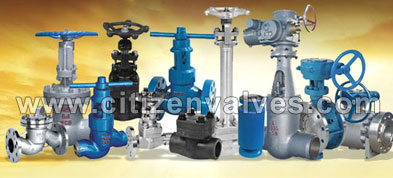 ASTM A494 Valves Manufacturer in India