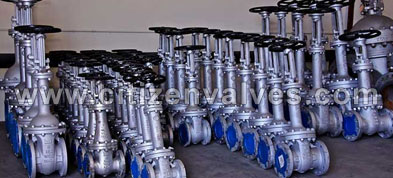 Alloy 20 Forged Valves Suppliers Dealers Distributors in India