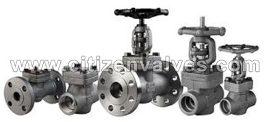 Nickel 200/201 Forged Valves Suppliers Dealers Distributors in India