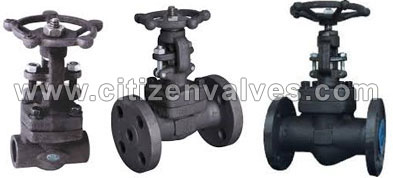Monel 400 Forged Valve Suppliers Dealers Distributors in India