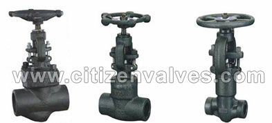 Duplex Steel Forged Valves Suppliers Dealers Distributors in India