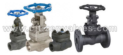 254 Smo Forged Valves Suppliers Dealers Distributors in India