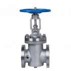 Duplex stainless steel Forged Gate Valves