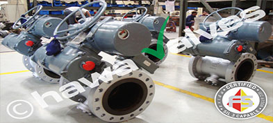 Duplex Steel Butterfly Valves Suppliers Dealers Distributors in India