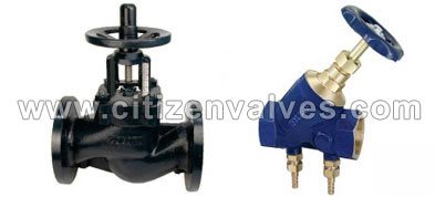 Duplex Steel UNS S31803 Valves Suppliers Dealers Distributors in India