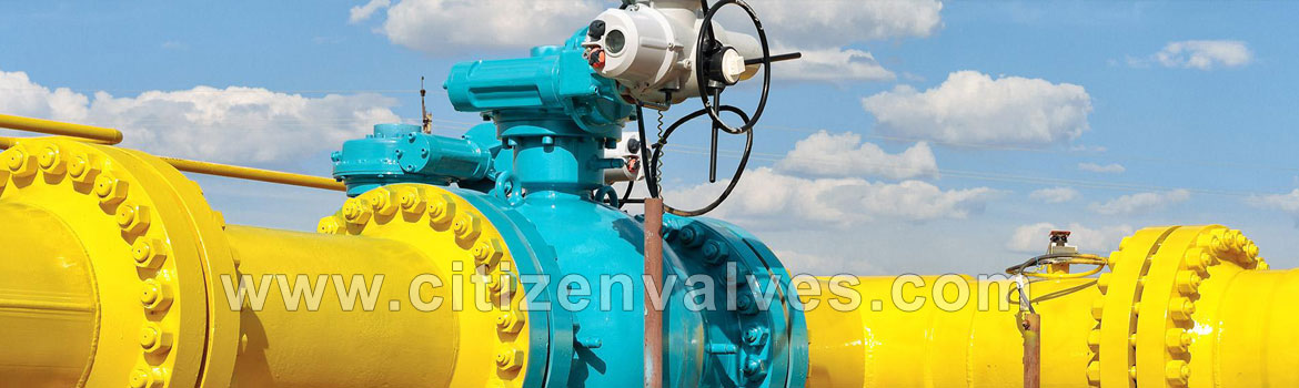 Plug Valves Dealers Distributors in Mumbai Pune Chennai India