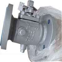 PTFE Sleeved Plug Valve, Steam Jacketed, WCB