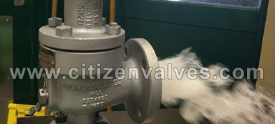 Stainless Steel Safety Relief Valves Suppliers Dealers Distributors in India