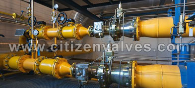 Carbon Steel Safety Relief Valves Suppliers Dealers Distributors in India