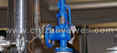 Hastelloy Safety Relief Valves Suppliers Dealers Distributors in India