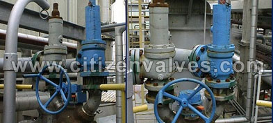 Duplex Steel Safety Relief Valves Suppliers Dealers Distributors in India