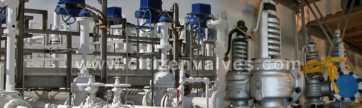 Safety Relief Valve Manufacturers in India / Safety Relief