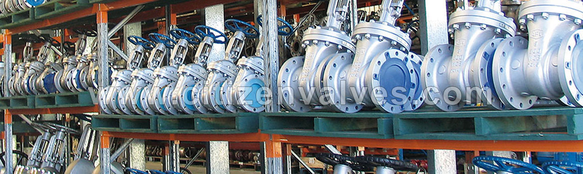 Gate Valves with World Wide Shipping - Citizen Metals