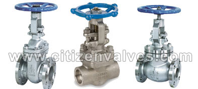 Nickel 200/201 API 6A Gate Valves Suppliers Dealers Distributors in India